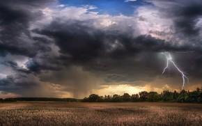 Картинка гроза, поле, лето, тучи