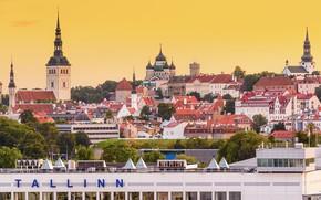 Картинка здания, крыши, Эстония, Таллин, панорама