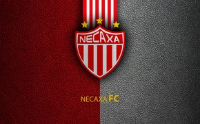 Картинка wallpaper, sport, logo, football, Necaxa