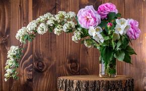 Картинка цветы, фон, доски, пень, розы, букет, банка, мокрые, боке, морозник