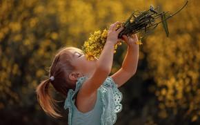Картинка лето, цветы, природа, платье, девочка, малышка, ребёнок, букетик, хвостики, Светлана Шелеметева