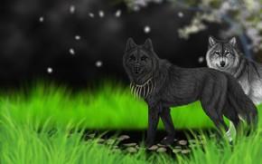 Картинка трава, фон, арт, волки