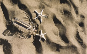 Картинка песок, пляж, лето, звезда, summer, beach, sand, marine, starfish