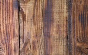 Картинка доски, структура, древесина