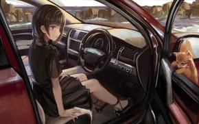 Картинка машина, девушка, автомобиль, салон