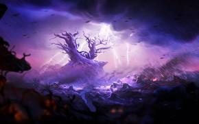 Картинка Rain, Ori and the Will of the Wisps, Moon studios