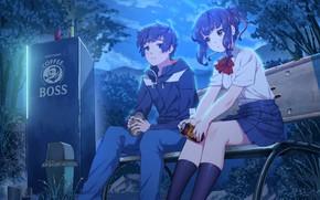 Картинка девушка, ночь, аниме, арт, парень, двое, Kimi no Na wa