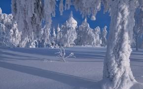 Картинка зима, снег, деревья, пейзаж, природа, церковь, тени, купола, Пермский край, Максим Евдокимов, Белая Гора