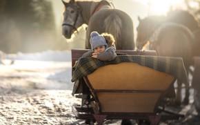 Картинка зима, снег, малыш, лошади, сани