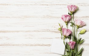 Картинка цветы, букет, wood, pink, flowers, эустома, eustoma
