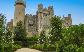 Картинка лето, небо, деревья, Англия, сад, архитектура, неоготика, замок Арундел