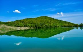 Картинка зелень, небо, вода, солнце, облака, деревья, отражение, берег, залив, Крым
