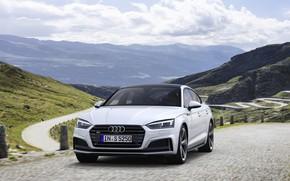 Картинка дорога, Audi, Audi A5, 2019, S5 Sportback