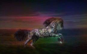 Картинка движение, конь, лошадь
