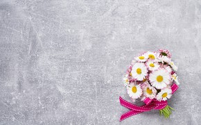 Картинка цветы, букет, лента, маргаритки