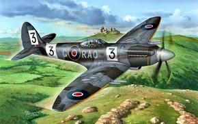 Обои Supermarine, истребитель, поршневой, Великoбритaния, Spitfire F.Mk.22, artwork, RAF