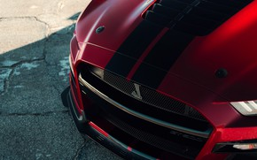Картинка Mustang, Ford, Shelby, GT500, перед, кровавый, 2019