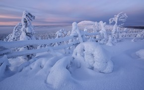 Картинка зима, снег, деревья, забор, сугробы, Финляндия, Finland, Kuusamo, Куусамо, Максим Евдокимов