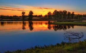 Картинка солнце, деревья, закат, отражение, синева, берег, вечер, водоем