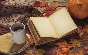 Обои осень, листья, фон, дерево, кофе, colorful, шарф, чашка, книга, доска, wood, background, autumn, leaves, cup, ...