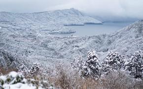 Картинка зима, лес, деревья, горы, озеро, Япония, Japan, Hakone, Хаконе, Озеро Аси, Lake Ashi