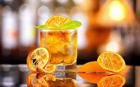 Картинка стакан, апельсин, алкоголь
