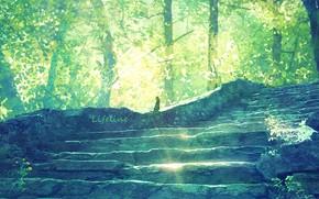 Картинка лес, кошка, лестница