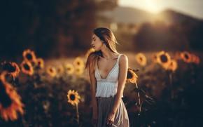 Картинка девушка, подсолнухи, настроение