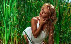 Картинка зелень, трава, солнце, модель, макияж, платье, прическа, красотка, в белом, на природе, позирует, боке, закрыла …