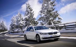 Картинка белый, деревья, BMW, ограждение, седан, гибрид, 5er, четырёхдверный, 2017, 5-series, G30, 530e iPerformance