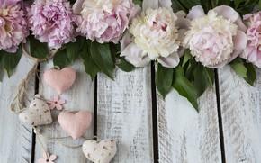 Картинка цветы, сердечки, пионы, композиция