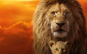 Картинка кадр, львенок, Король Лев