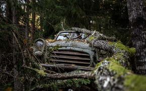 Картинка машина, лес, лом