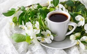 Картинка цветы, ветки, кофе