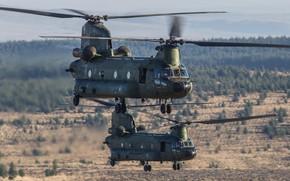Картинка ВВС Нидерландов, Royal Netherlands Air Force, Boeing CH-47D Chinook, CH-47 Chinook, Chinook