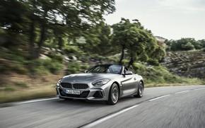Картинка деревья, серый, скорость, BMW, склон, родстер, BMW Z4, M40i, Z4, 2019, G29