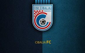 Картинка wallpaper, sport, logo, football, Cibalia