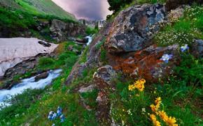 Картинка пейзаж, горы, природа, ручей, камни, растительность, США, Нью-Мексико