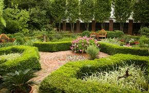Картинка парк, сад, клумбы