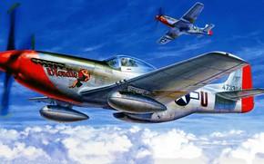 Картинка Mustang, ВВС США, North American, P-51D, дальнего радиуса действия, американский одноместный истребитель