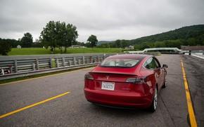 Картинка Красный, Задок, Электрокар, Tesla Model 3