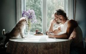 Картинка стол, интерьер, собака, мужчина, беседа