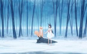 Картинка зима, лес, девушка, снег, кролик, лиса, ушки