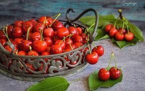 Обои ягоды, стол, черешня