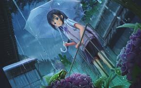 Картинка цветы, дождь, лягушка, зонт, девочка, перила, клумба, ливень, гортензия