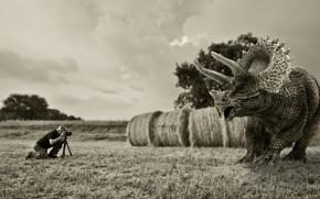 Картинка динозавр, ситуация, фотограф