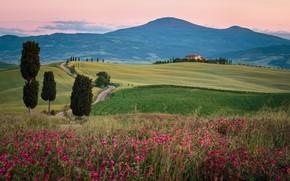 Картинка весна, Италия, Тоскана, Валь-д'Орча