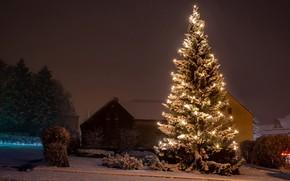 Картинка гирлянда, праздник, снег, зима, туман, дома, деревья, кусты, дорога, ёлка, Германия, огни, ночь, Новый год, …