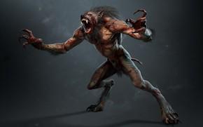 Картинка монстр, зверь, оборотень, ликантроп, вервольф, lycanthrope, lycan, The Witcher 3 Wild Hunt, Ведьмак 3 Дикая …