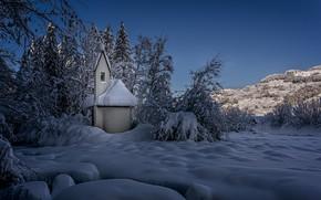 Картинка зима, снег, деревья, пейзаж, природа, Швейцария, церковь, кусты